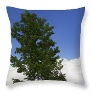 Tree Against A Cloudy Blue Sky In Vermont Throw Pillow