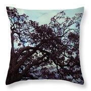 Tree Against Sky Throw Pillow