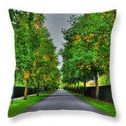Tree Alley Throw Pillow