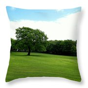 Tree Amidst Freshly Mowed Grass Throw Pillow