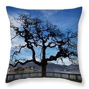 Tree And Borromee Islands Throw Pillow