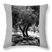 Tree And Cactus Throw Pillow