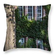 Tree And Ivy Windows Michigan State University Throw Pillow