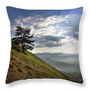 Tree And Misty Landscape Throw Pillow