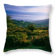 Tree And Plants On A Landscape Throw Pillow