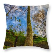 Tree And Rocks Throw Pillow