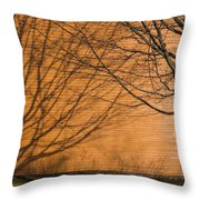 Tree And Shadow At Cogswells Grant Throw Pillow