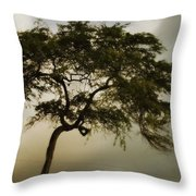 Tree And Stormy Sky Throw Pillow