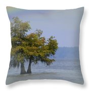 Tree And The Rainbow Throw Pillow