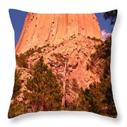 Tree At Devils Tower Throw Pillow
