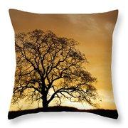 Tree At Golden Sunrise Throw Pillow