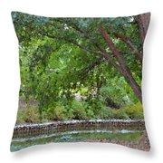 Tree At Norfolk Botanical Garden 4 Throw Pillow