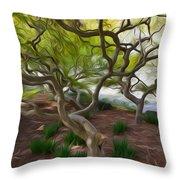 Tree At Norfolk Botanical Garden Throw Pillow