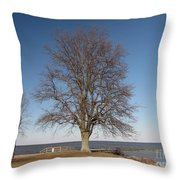Tree At Sandy Point Throw Pillow