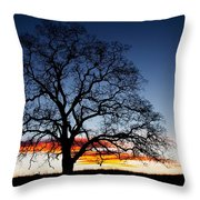 Tree At Sunrise Throw Pillow