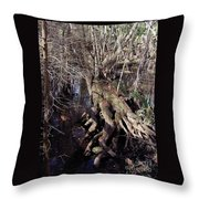 Tree Roots At The River Throw Pillow