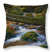 Tree Bridge In The Smokies Throw Pillow