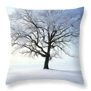 Tree Covered In Hoar Frost Throw Pillow