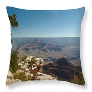 Tree Edge Throw Pillow