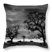 Tree Family In Black And White Throw Pillow
