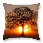 Tree Fog Sunrise Throw Pillow