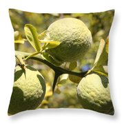 Tree Fruit Throw Pillow