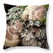 Tree Growths Throw Pillow