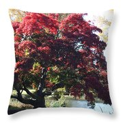 Tree Hanging Into Lake Throw Pillow