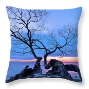 Tree Hanging Over Lake - Photographers Collection Throw Pillow