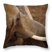 Tree Hugging Elephant Throw Pillow