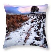 Tree In A Field  Throw Pillow by John Farnan
