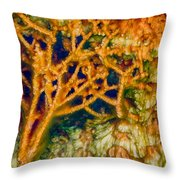 Tree In A Park Hot Springs Throw Pillow