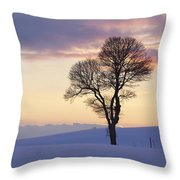 Tree In A Winter Landscape In The Evening Throw Pillow