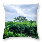Marula Tree In African Sky Throw Pillow