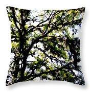 Tree In Blue Ridge Mountains Throw Pillow