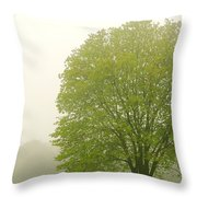 Tree In Fog Throw Pillow by Elena Elisseeva