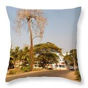Tree In Goa Throw Pillow
