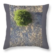 Tree In Grass From Balloon Throw Pillow