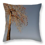 Tree In India Throw Pillow