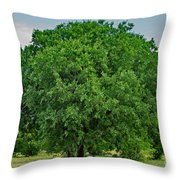 Tree In Nature Throw Pillow