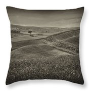 Tree In Sienna Throw Pillow