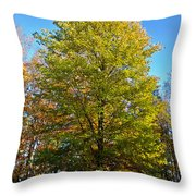Tree In The Cemetery Throw Pillow