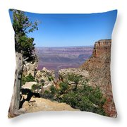 Tree In The Grand Canyon Throw Pillow