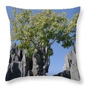 Tree In The Tsingy De Bemaraha Madagascar Throw Pillow