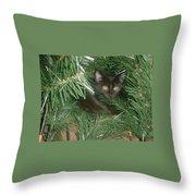 Tree Kitten Throw Pillow