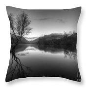 Tree Lake Throw Pillow