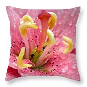 Tree Lily Upclose With Ant Throw Pillow