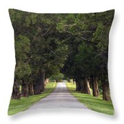 Tree Lined Drive - D008564 Throw Pillow