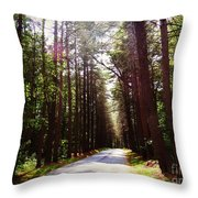 Tree Lined Road Throw Pillow by Crystal Joy Photography