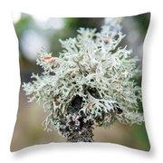 Tree Moss 2 Throw Pillow